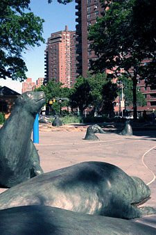 Seals at East River Park