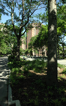 East River Housing Grounds